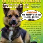 Sommerfestplakat 2012 HP