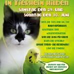 Sommerfestplakat 2013 HP