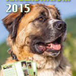 Tierheimkalendarium 2015 Pfade.indd